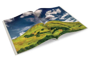 brochure printing edinburgh
